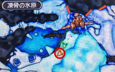 メーダボードがいる超高空の小島の場所
